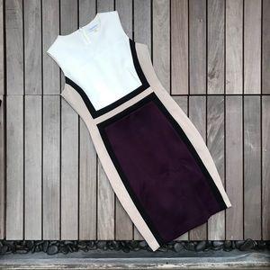 Calvin Klein   Sleeveless Purple Black & Tan Dress
